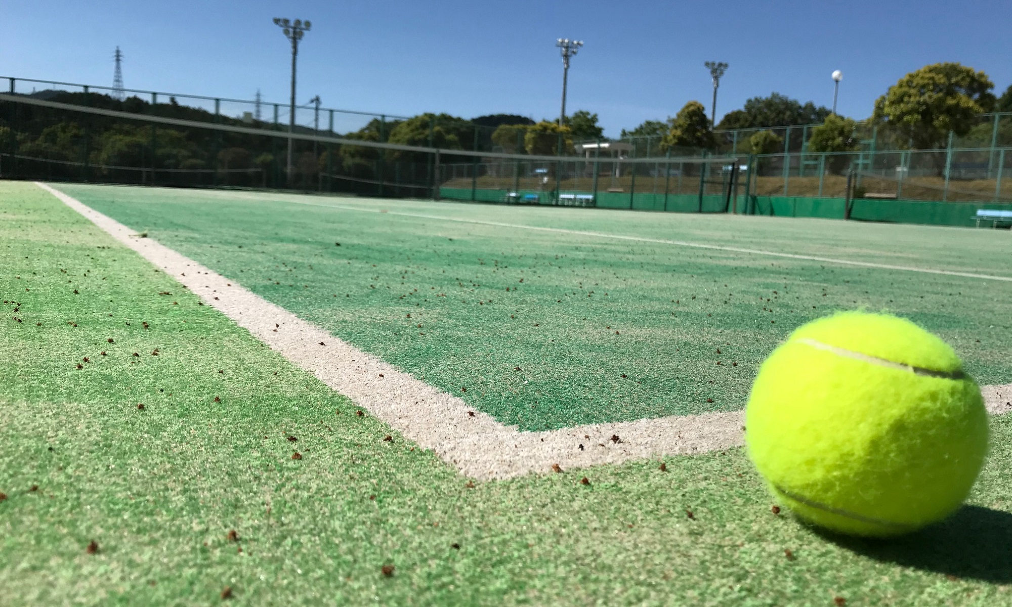 出雲テニス協会